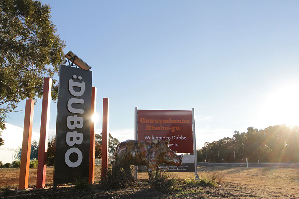 Dubbo - A Year In Review